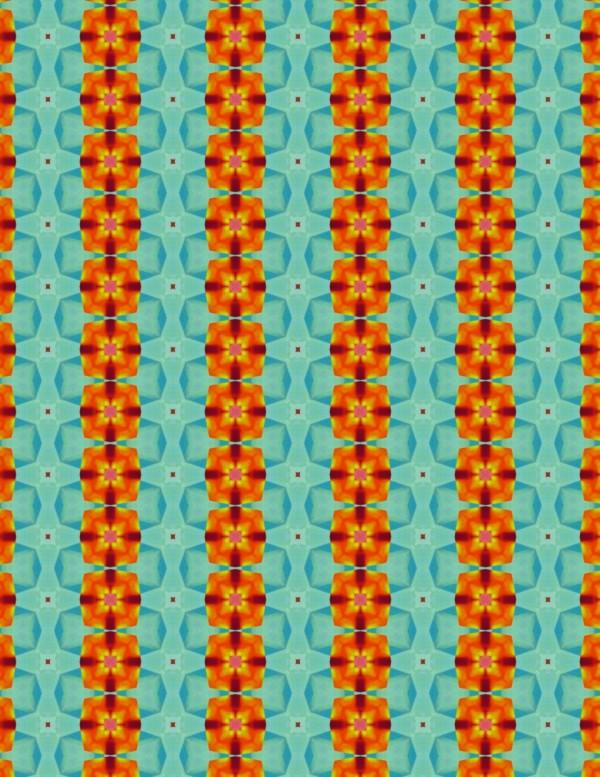 Orange Flowers 002