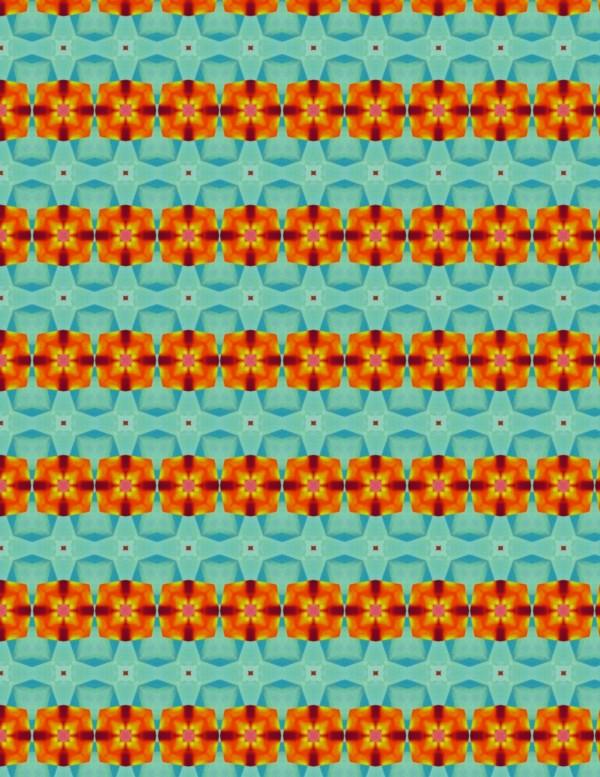 Orange Flowers 003