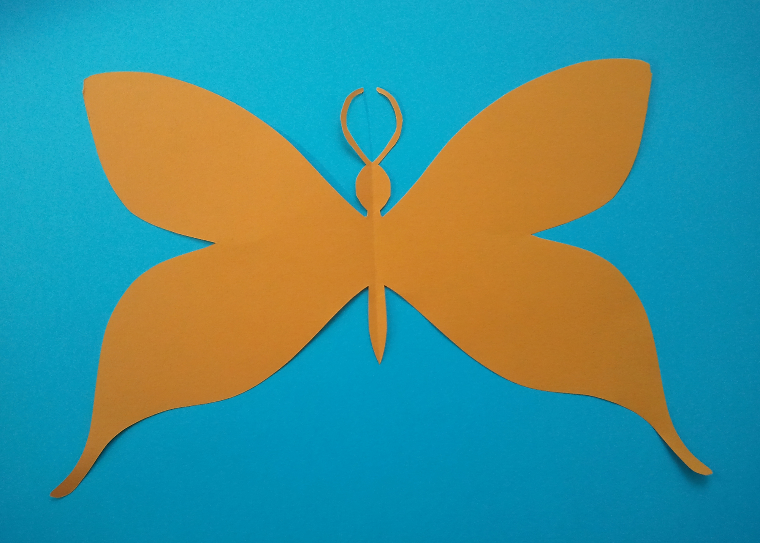 Kirigami Butterfly